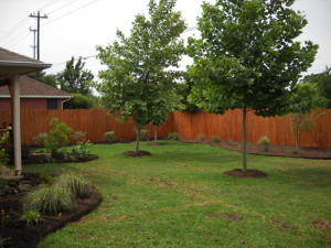 1Fence After